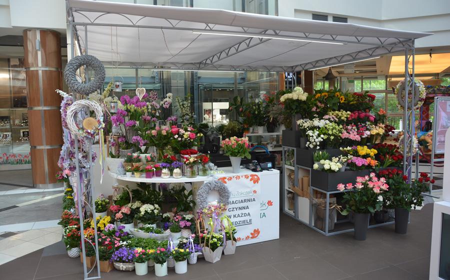 plaza kwiaciarnia Poznań